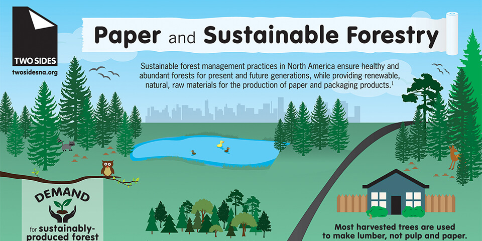 infographic on print sustainability