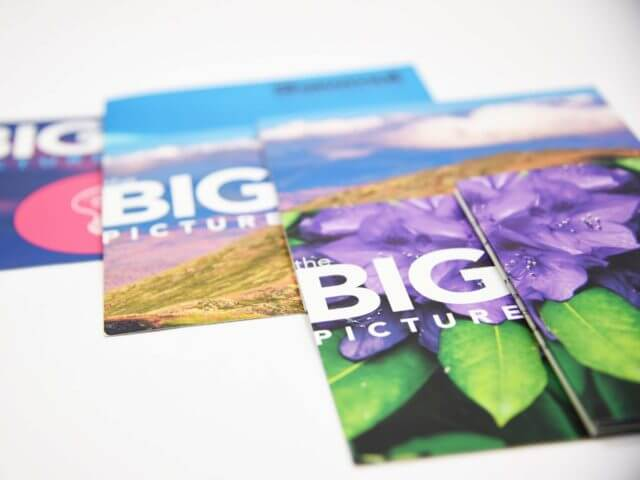 big picture mailers