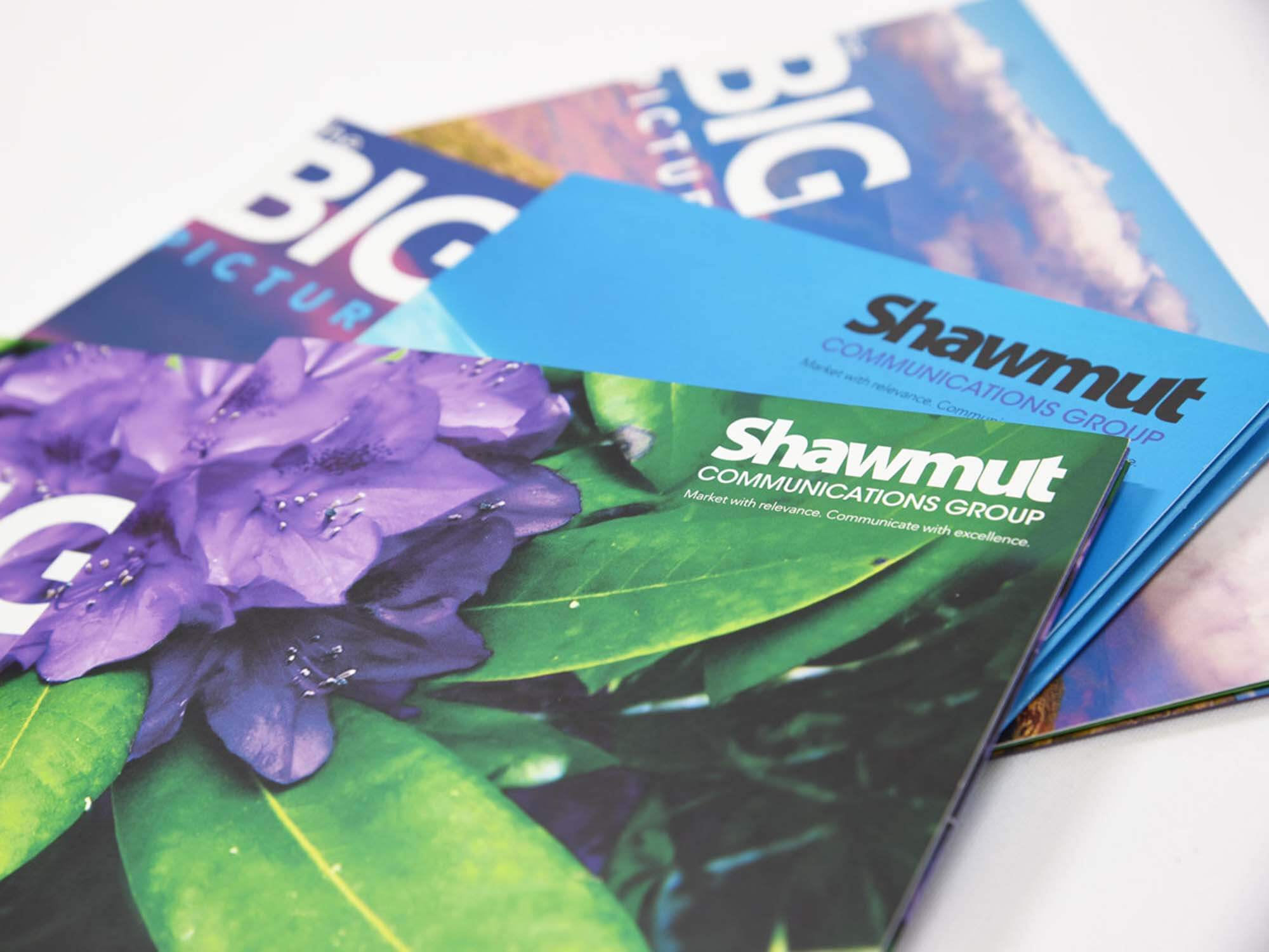 shawmut big picture mailers