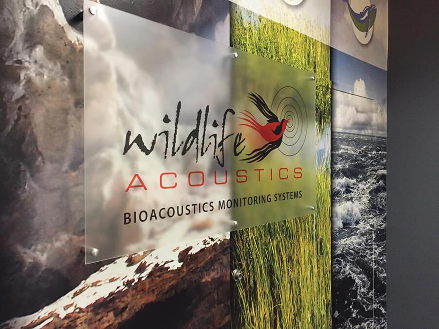 Wildlife Acoustics wall graphics
